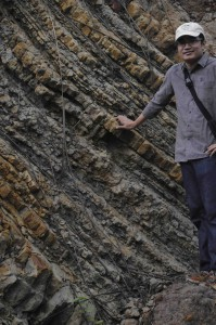 Flaggy, organic-rich sandstones at the top of the Pulaubalang Fm. Dr Ferian Anggara for scale.