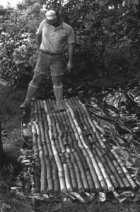 Ron Stanton examining core in Pennsylvania, Photo circa 1980 (© Tim A Moore)