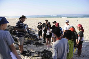 Professor David Gust explains turbidites at Cabarita Beach, NSW