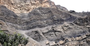 Outcrop of Cretaceous-Paleocene age coal-bearing Guaduas Formation